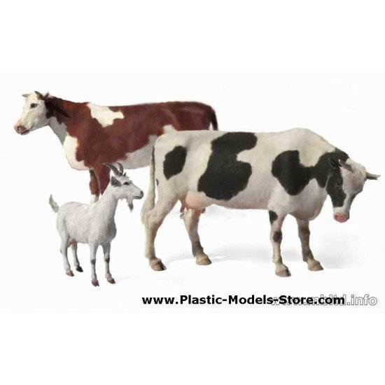 Domestic Animals. Cows 1/35 Master Box 3566